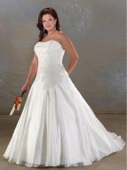 A-Line Lace-Up Semi-Cathedral Organza wedding Dress