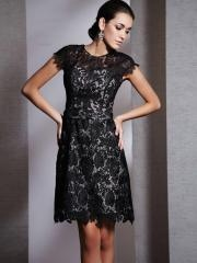 Honorable Short-length Short-sleeves Scoop Neckline Embroidered Lace-up Taffeta Prom Dress