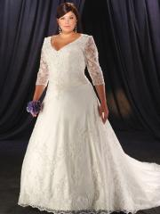 V-Neckline A-Line Beading Plus Size Wedding Dress